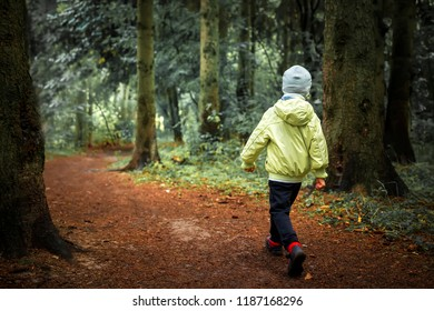 Child lost in forest. Little boy walks in green forest. Hiking. Children in outdoor in woodland. Lonely boy in forest