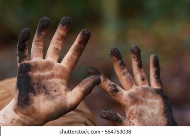 Child muddy hands, playing in a wood