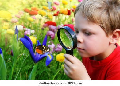 Child observing nature