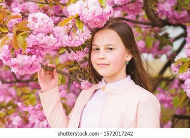 Child on pink flowers of sakura tree background. Girl enjoying cherry blossom or sakura. Cute child enjoy nature on spring day. Aromatic blossom concept. Girl tourist posing near sakura. Tender bloom.