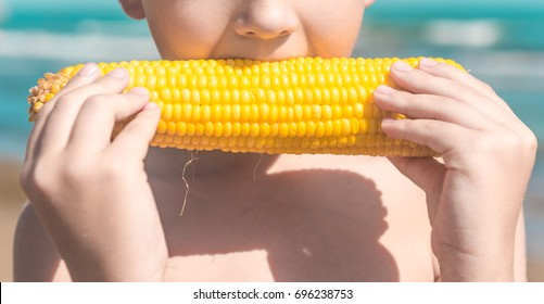 Child on summer beach - a lovely boy eat a cob of boiled corn (GMO free)