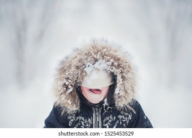 A child on winter walk licking snow