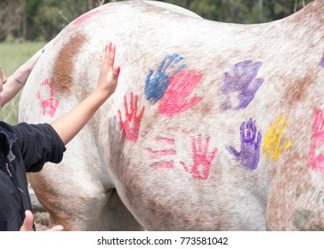 Child Painting a Horse