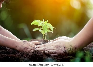 Trẻ em và cha mẹ tay trồng cây non trên đất đen với nhau như lưu khái niệm thế giới trong tông màu cổ điển