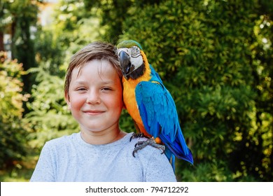 A child with a parrot Ara on his shoulder