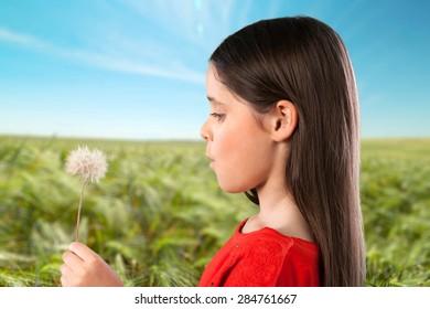 Child, People, Flower.