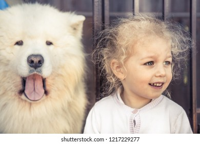 child pet dog portrait domestic animal and similar child owner concept domestic animal guard friendship