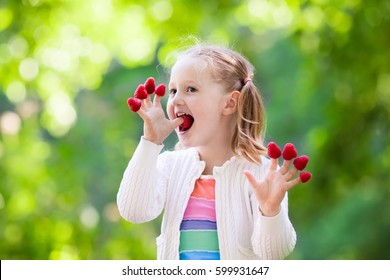 Child picking raspberry. Kids pick fresh fruit on organic raspberries farm. Children gardening and harvesting berry. Toddler kid eating ripe healthy berries. Outdoor family summer fun in the country