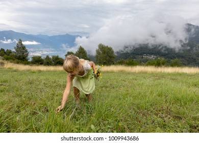 child picking wildflowers