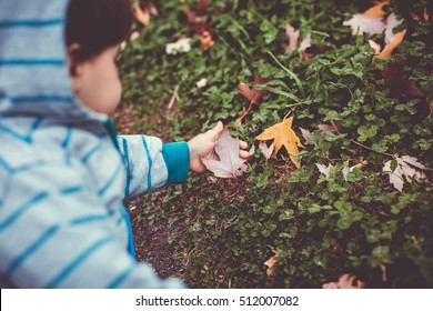 Child playing with autumns leaves