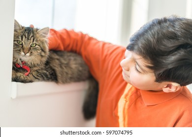 Child playing with cat at home