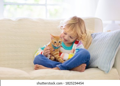 Child playing with cat. Kid holding kitten. Little boy snuggling cute pet animal sitting on couch in sunny living room at home. Kids play with pets. Children and domestic animals.