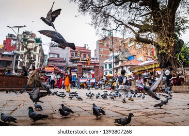 child playing and feeding corn for pigeons flying in Kathmandu Durbar Square, Nepal