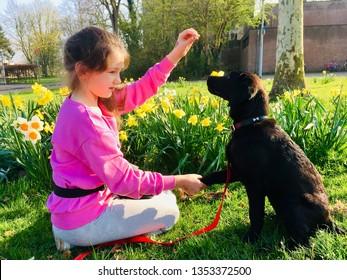 Girl Labrador Love Images, Stock Photos & Vectors | Shutterstock