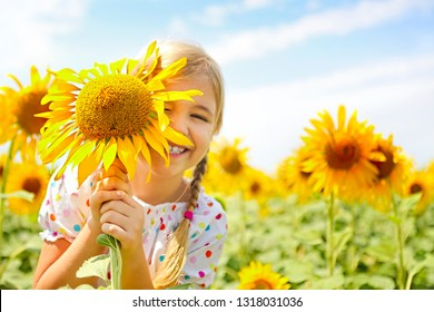 Child playing in sunflower field on sunny summer day. little girl plays with sunflowers.
