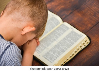 The child prays over the open book of the Bible, the boy folded his arms and bowed in peace in prayer to God.