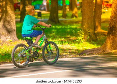 A child riding a bicycle on the road in the park in the summer.