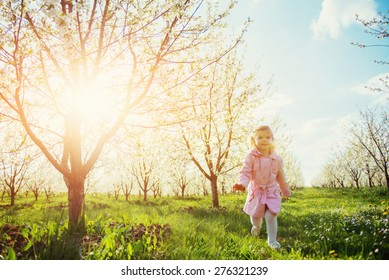 Child running outdoors blossom trees. Colorful toning effect.