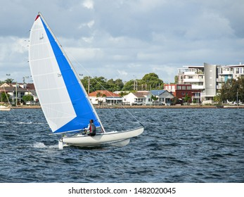 Child sailing small catamaran at speed with vivid blue and white sails for fun and in competition. Teenage boy sailor racing with one hull airborne on saltwater Lake Macquarie. Photo  commercial use