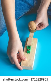 A child shoots a walnut at a target from a handmade catapult