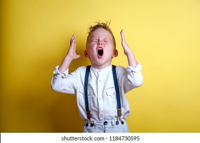 Child shouting loud. Stylish little child boy holding hands near head. Portrait of shocked, angry and emotional little boy  isolated on yellow background.