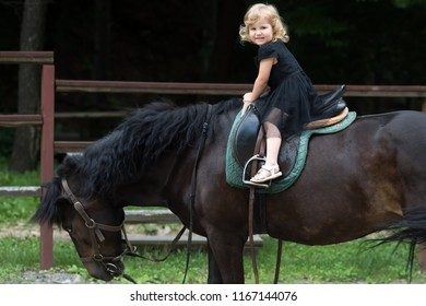 Child sit in rider saddle on animal back. Girl ride on horse on summer day. Friend, companion, friendship. Equine therapy, recreation concept. Sport, activity, entertainment. riding school