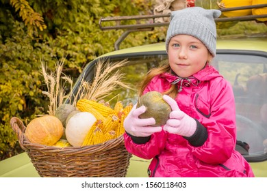 A child sits on the hood of a car and holds a small pumpkin in his hands. Little girl sells agricultural crops at the autumn fair. Portrait of a child next to a basket with millet corn and pumpkins