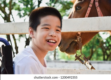 The child is smiling on a wheelchair. He sitting in the ranch. In the white fence there is a brown horse. Happy disabled child concept.