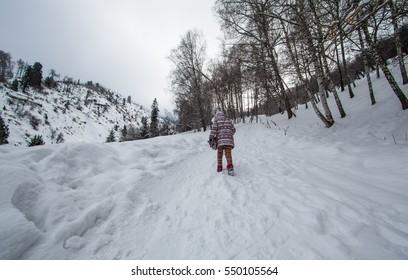 child in snowy mountains with fir trees