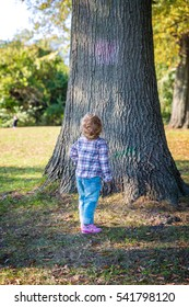 Child Standing near a tree looking up