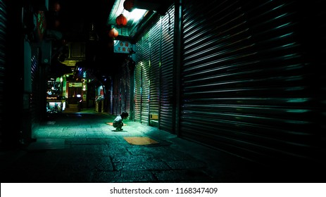 If a child stays curious, he will continue to explore and discover. In the image, a boy squats down and peeps into a small gap. He is curious what is inside. The street is dark as shops closed.