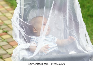 Child in stroller covered with protective net during walk. Baby carriage with anti-mosquito white cover. Midge protection for children during outdoor walking season.