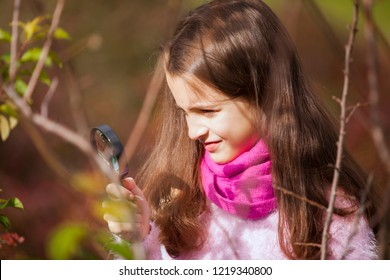 Child studing biology in nature