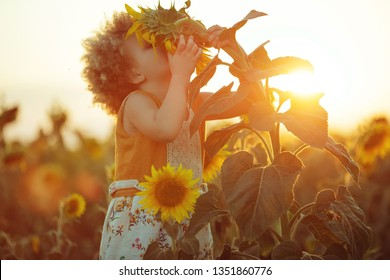 Child in sunflowers