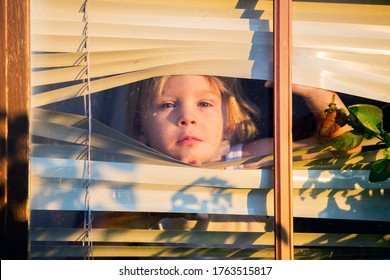 Child, toddler boy, looking through window outside