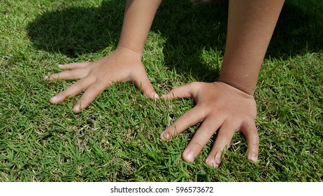Child touching on green grass with both hand . Outdoors is the best place for children to practice emerging physical skills. They can freely experience motor skills like running, leaping, & jumping