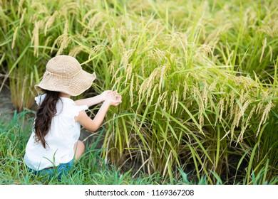 Child touching rice