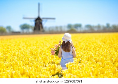 Child in tulip flower field with windmill in Holland. Little Dutch girl in white hat with bow picking flowers for bouquet. Kid in tulips fields in the Netherlands at wind mill.