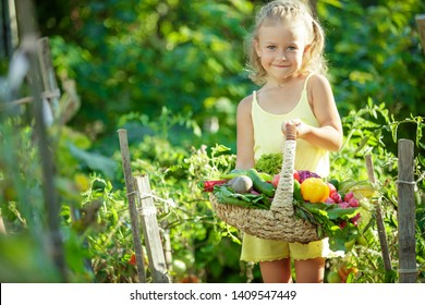 A child with vegetables in the garden
