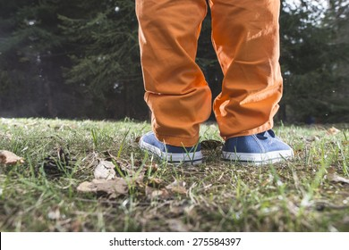 Child walking in the forest. Close up shoes