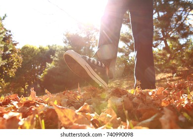 Child walking and kicking fall leaves