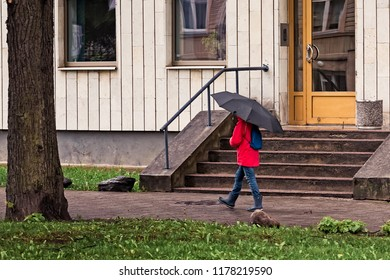 A child walking with a large umbrella and a red rain coat on a spring day in Tallinn, Estonia.