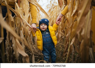 child walking though the corn field