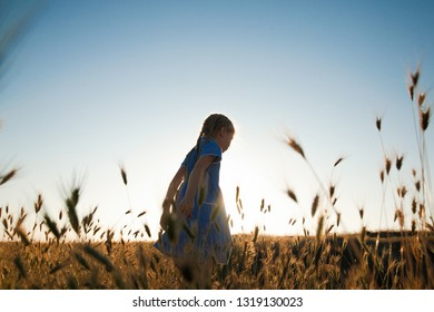 The child walks and rests in nature. An active and energetic little girl runs across a wheat field towards sunset. Summertime. Happy childhood. Summer in nature. Lifestyle.Positive emotions and energy