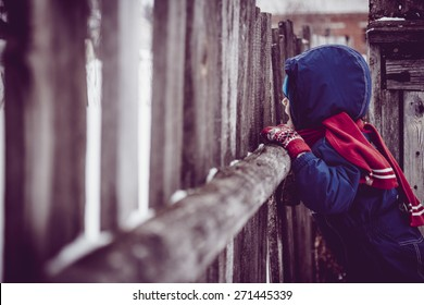 child is watching over the fence