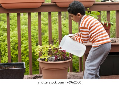 Child Watering Coleus Plant on a Deck