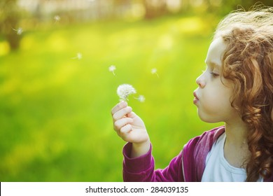 Child with white dandelion in your hand. Background toning instagram filter.