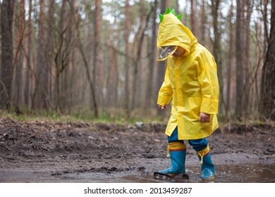 Child in a yellow raincoat walking in a puddle in rubber boots, walking in the forest after the rain