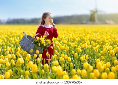Child in yellow tulip flower field. Blooming garden in Holland, Netherlands. Little girl in tulips farm. Kid with basket picking fresh flowers on sunny spring day. Dutch landscape.