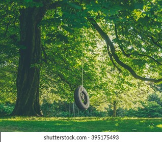 Childhood Nostalgia Image Of a Tire Swing Hanging From A Tree On A Summer's Afternoon
